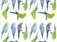 Декоративные с/к элементы Декоретто Волнистые попугайчики (А-1039)