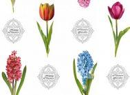 Клеенка Декорама 1,4*20м 121А цветы