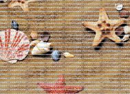 FV45 Дорожка из вспен.ПВХ фотопечать () 0.8х15м