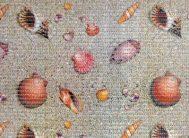 FV4 Дорожка из вспен.ПВХ фотопечать ( беж/песок,морск.ракуш.) 0.65х15м
