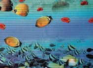 FV1 Дорожка из вспен.ПВХ фотопечать (гол/корал.рыбки ) 0.65х15м